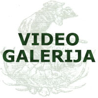 "Video galerija LU ""Paraćin""- Paraćin"